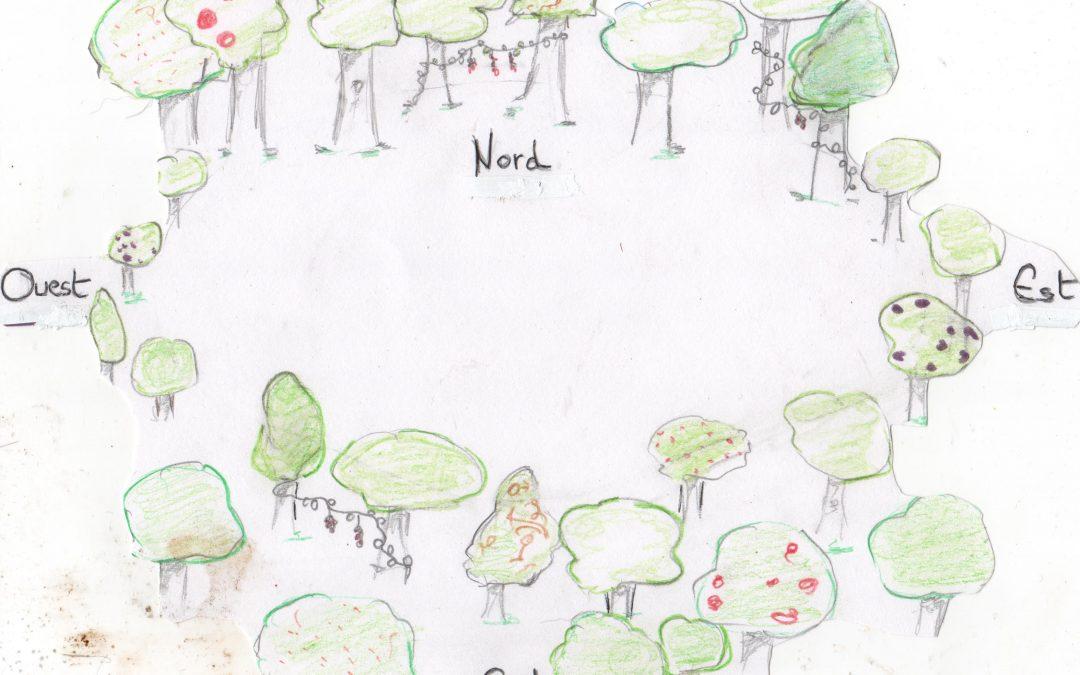 La conception de clairière dans un jardin-forêt